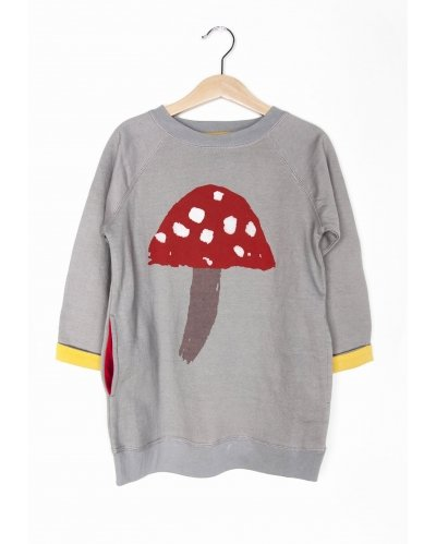 DRESS FLY AGARIC