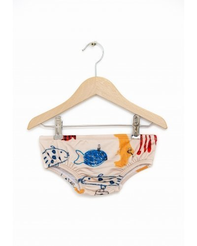 Swim Set Bottom Shoal Of Fish